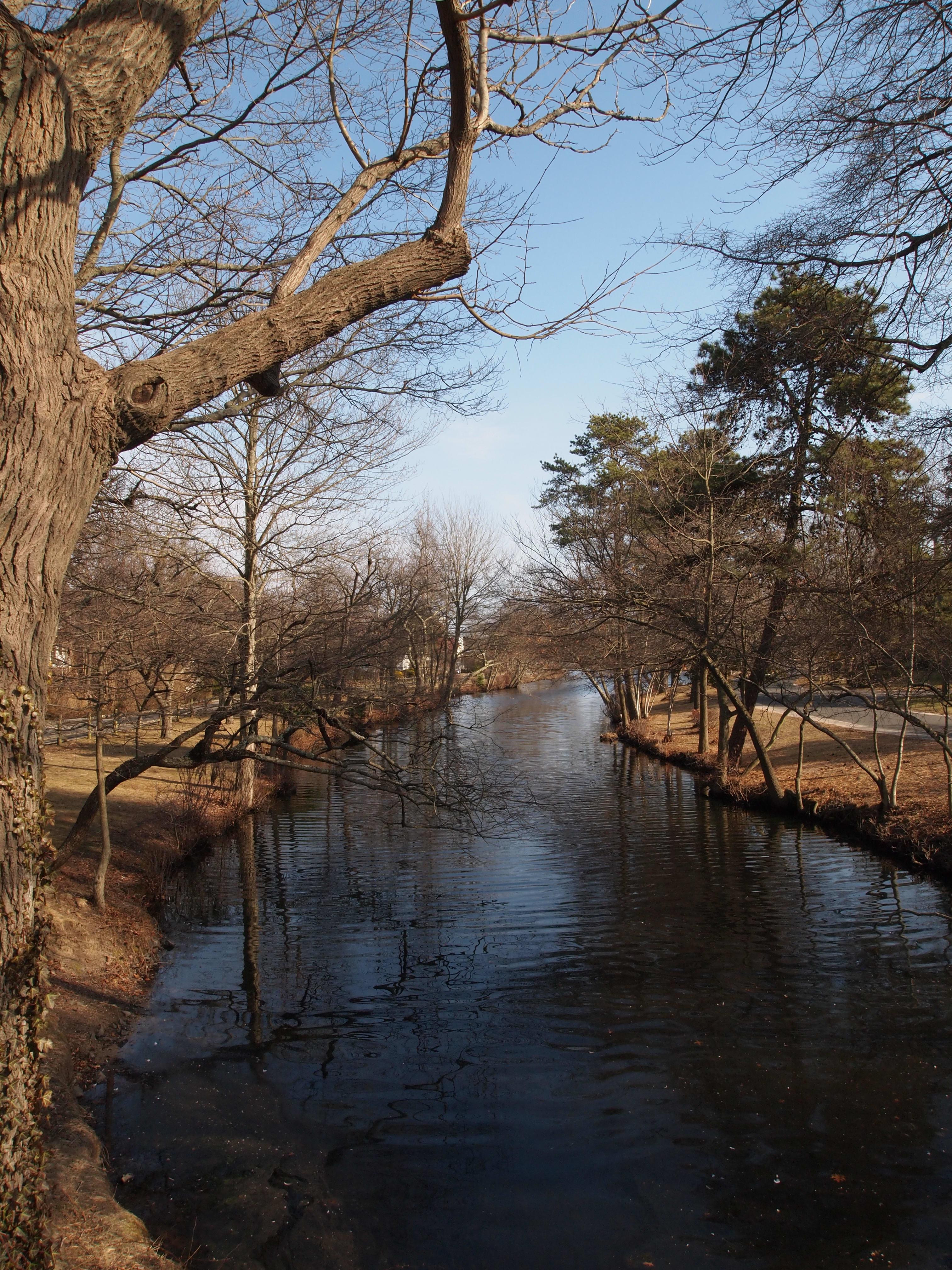 Landscape Sample