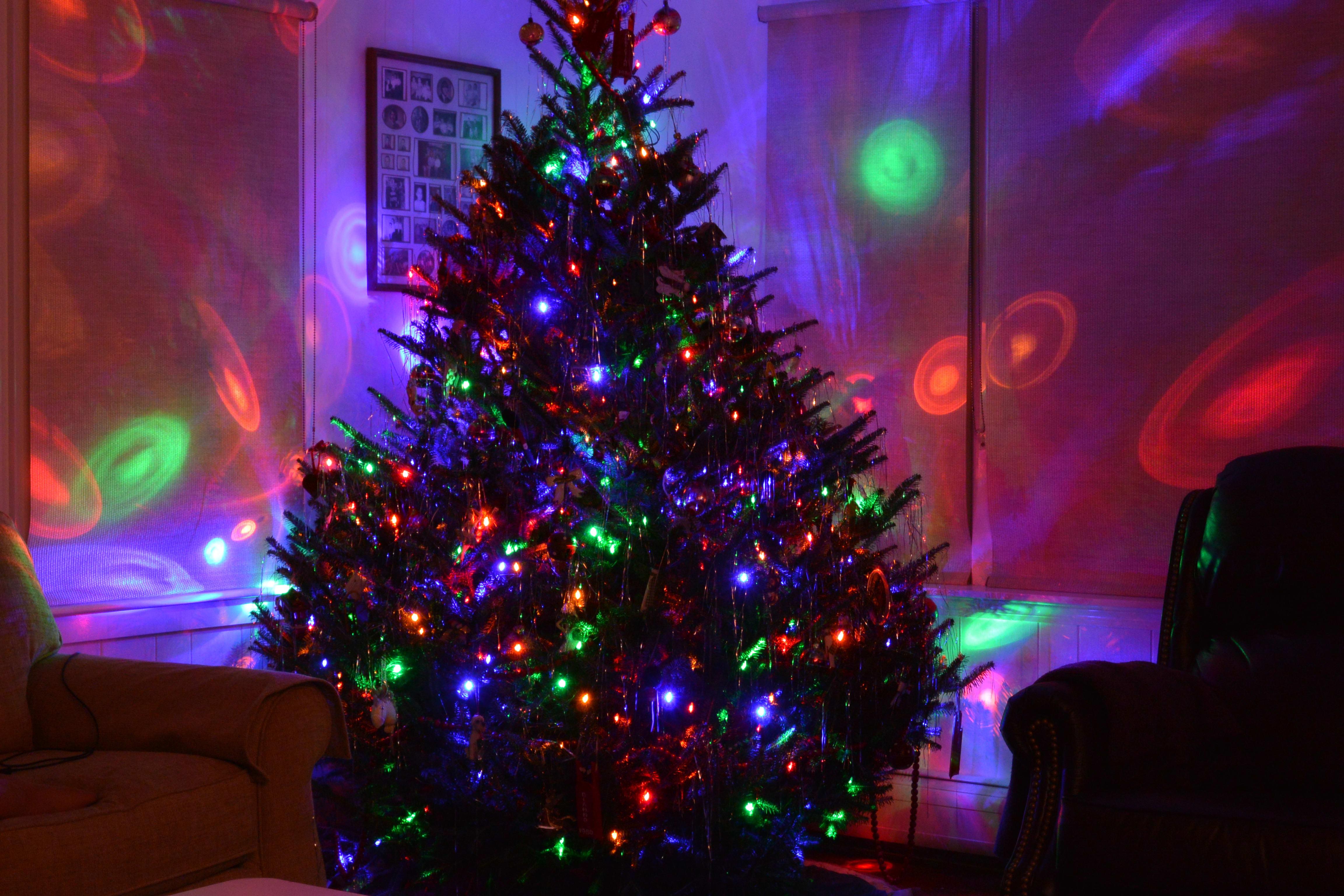 Sample photo, Nikon 1 AW1: Christmas tree