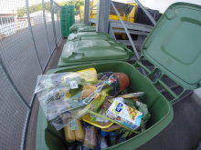 Shameful Waste of Food