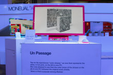 Moneual's Pink Un Passage PC