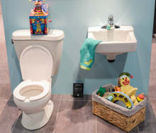 Pee Wee Collection Still Life