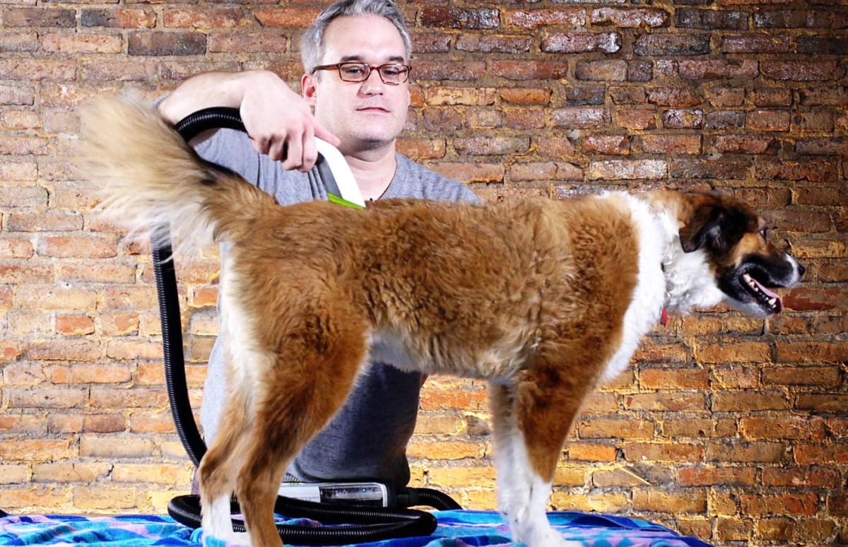 The Barkbath Dog Washing Machine Is Basically A Vacuum