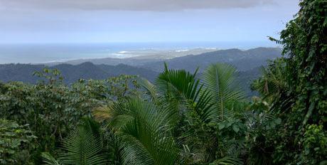 Eastern-Caribbean-460.jpg