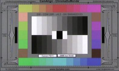 Canon_FS11_3000_Lux_Vivid_web.jpg