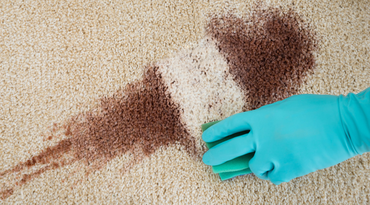 how to clean hair dye stain from carpet