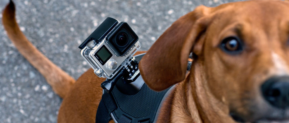 CCI-GoPro-Hero-4-Black-hero.jpg