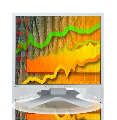 Product Image - Eizo FlexScan S1902