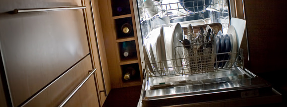 Dishwasherscary hero