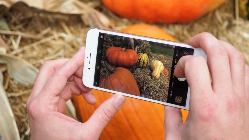 iPhone 8 Plus Camera In Use